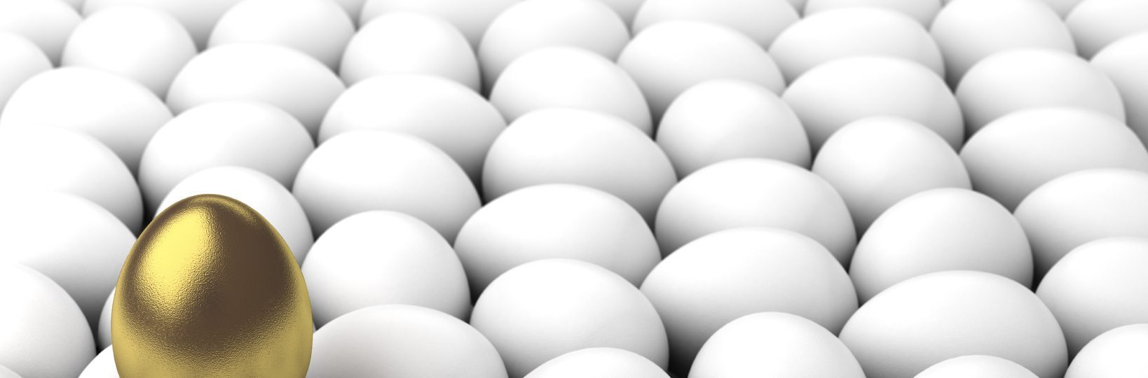 Business Grants And Finding the Golden Egg