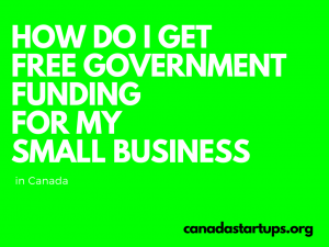 How do I get free government funding for my small business