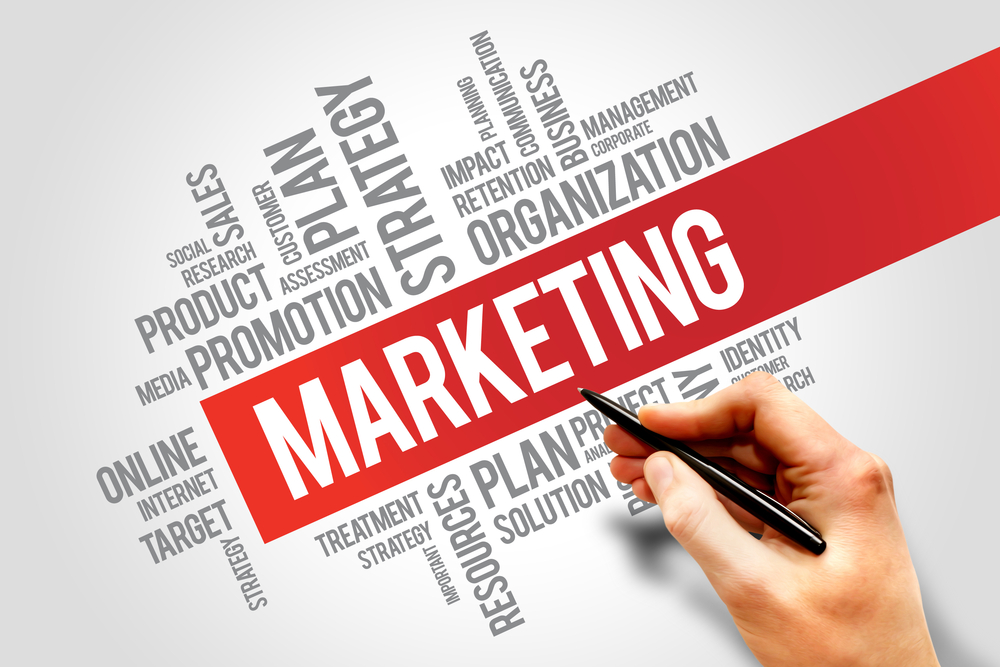 are you a marketing expert