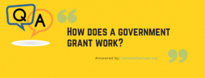 How does a government grant work